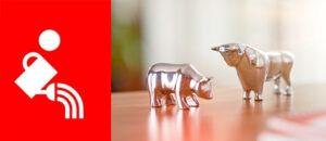 Deka Wertpapiere, Aktien, Sparkasse, Einfach erklärt, Dividende
